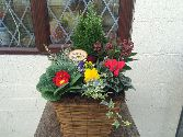 Birchwood Planter *